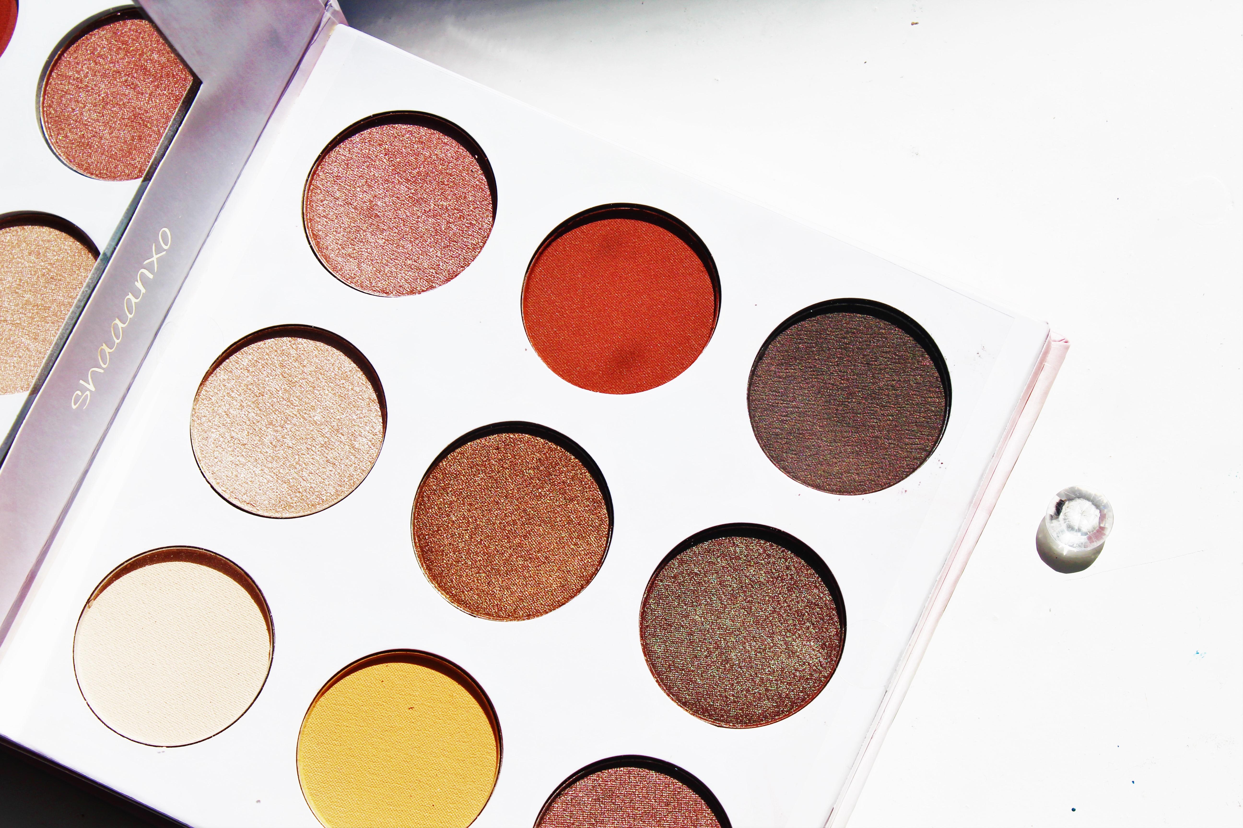 BH Cosmetics Shaaanxo palette | eyeshadow palette