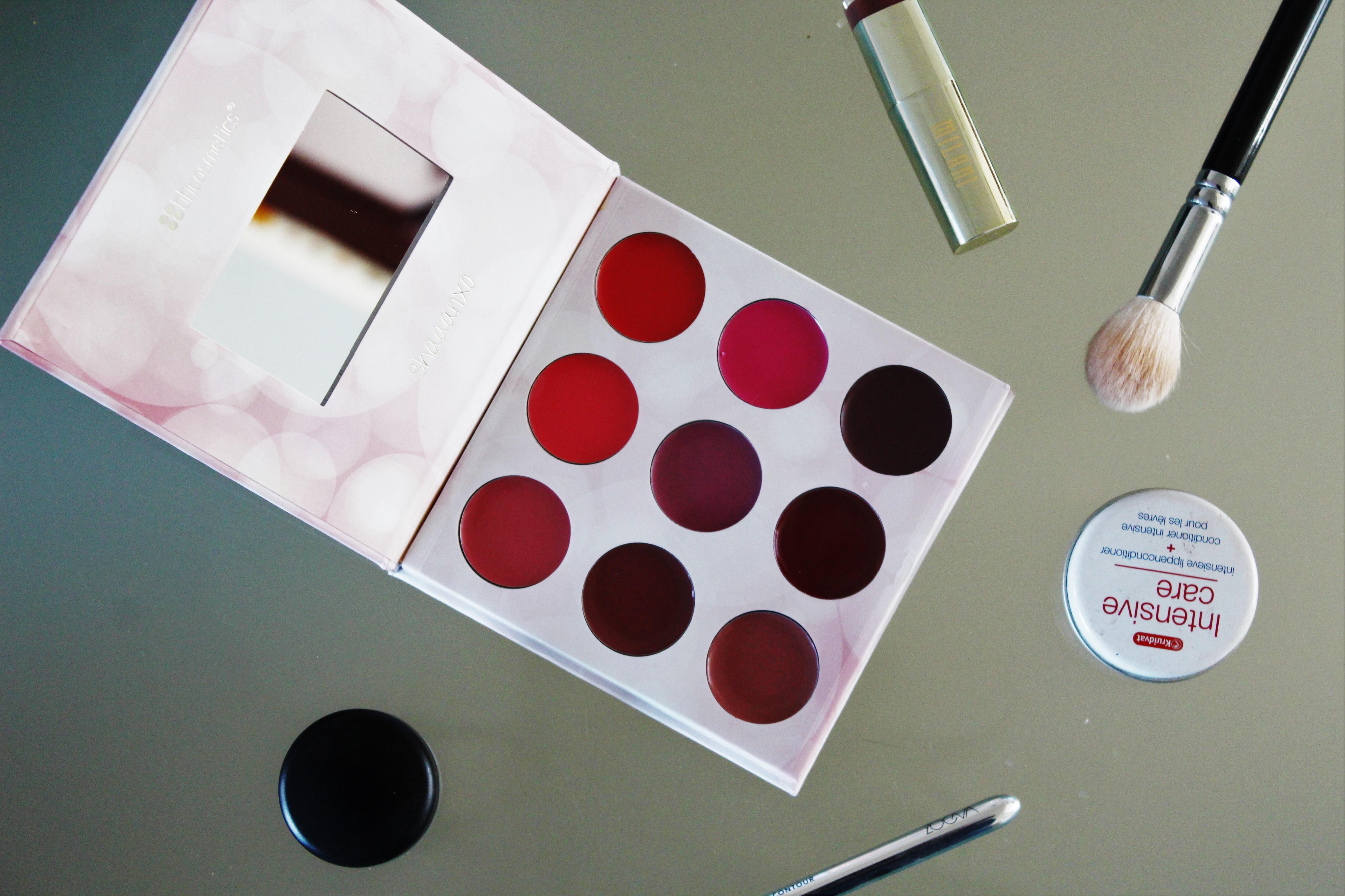 BH Cosmetics Shaaanxo palette | lipstick palette