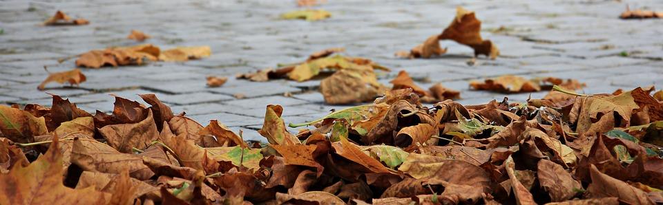 10 x wat er kut is aan herfst & oplossingen