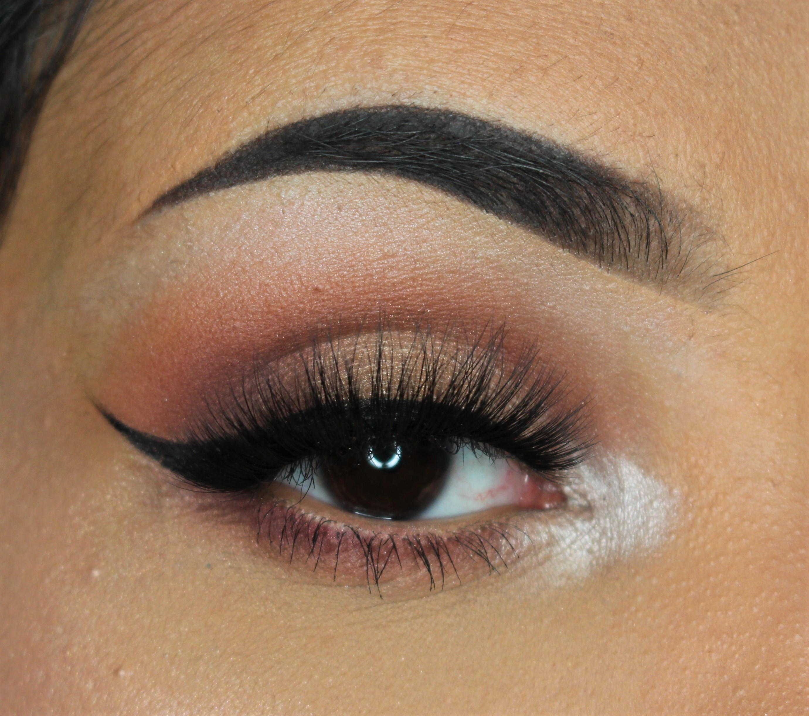 Annytude Wary lashes | Review & make-up look (Anastasia Modern Renaissance palette)