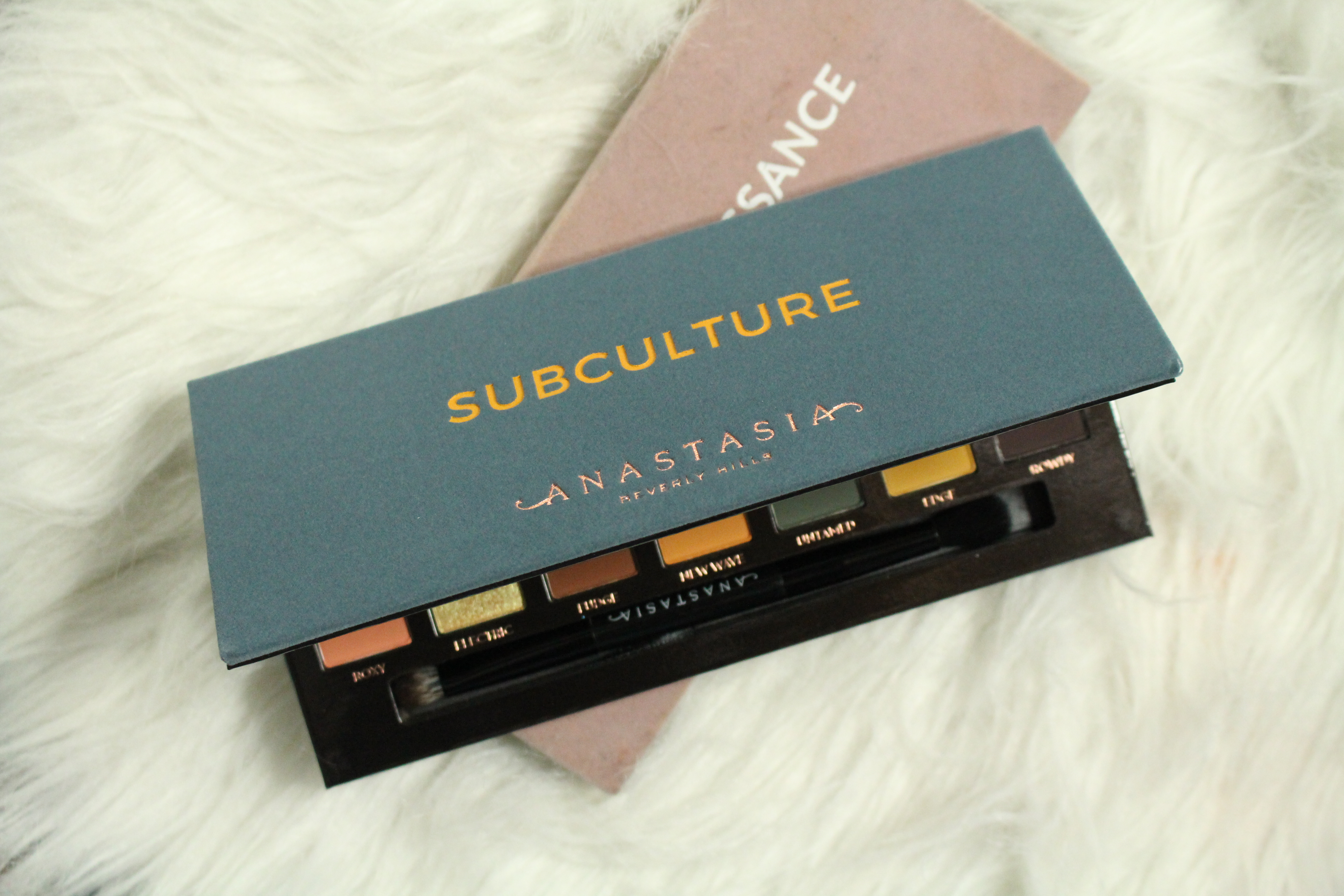 anastasia subculture palette review