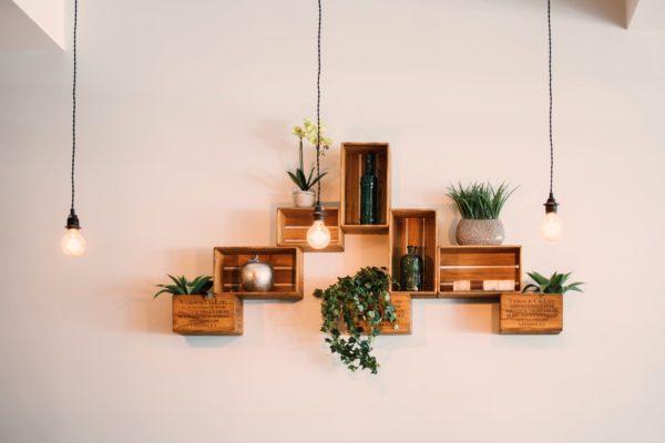 Tips om je interieur makkelijk op te leuken met planten & bloemen!